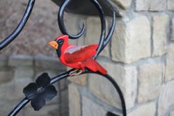 Cardinal detail