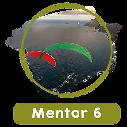mentor6.png