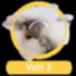 Volt3_.png