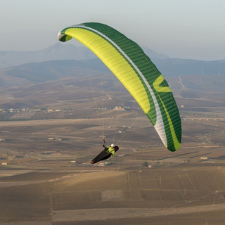 CAYENNE5-green-1-e1457522778572-1.jpg