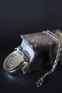 Timepiece-Inspired Pendant with Snake Shed