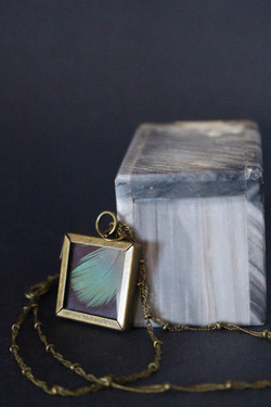 Specimen Locket with Teal Feather