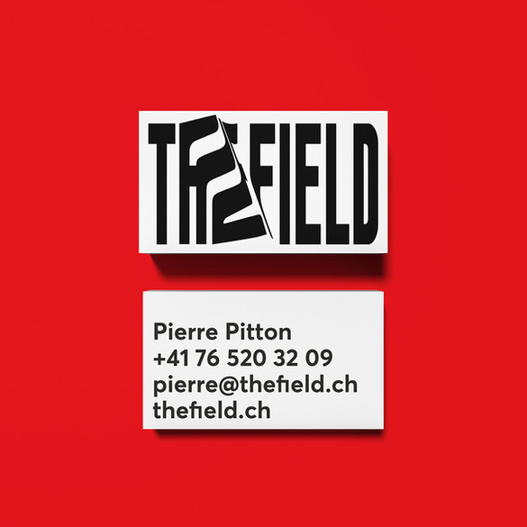 thefield3.jpg