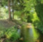 domaine-de-la-hure-ruisseau-fraicheur.jp
