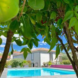 detente-piscine-chambre-d-hotes-saint-sy