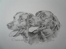 Molly & Benson