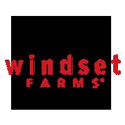Windset.png