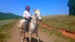 alvaro de paz caballo Gruneisen
