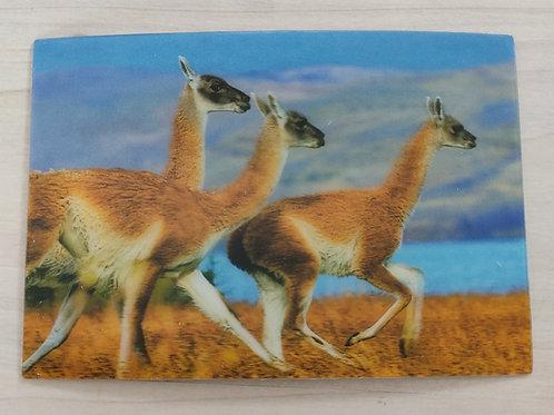 Vikunja-Postkarte 3D