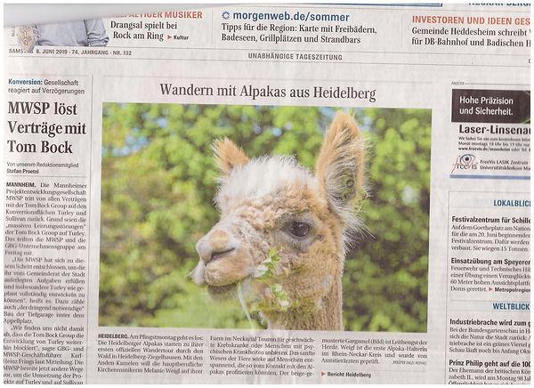 Titelseite Mannheimer Morgen 001.jpg