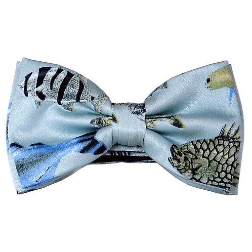Seidenfliege Tropenfische hellblau