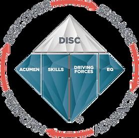 TTI DISC logo 1.png