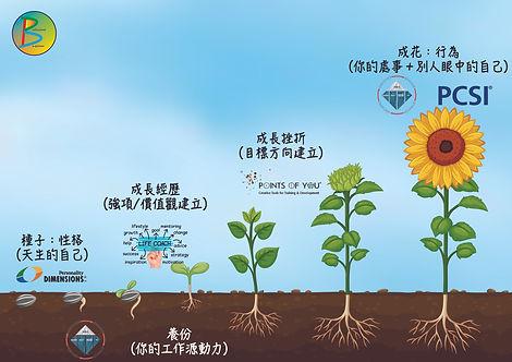 種子花_工作區域 1.jpg