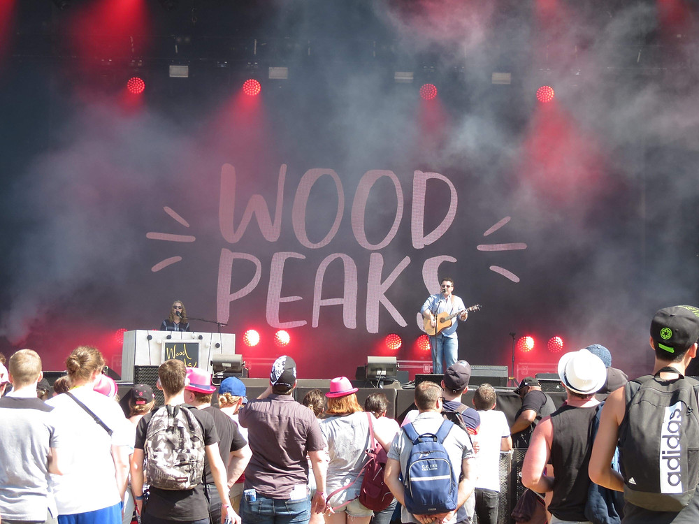 Wood Peaks Rock in evreux 2019 photo coline lfvre