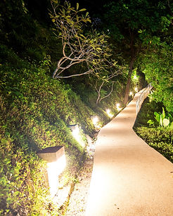 Mountains-footpath-in-the-night-62678351