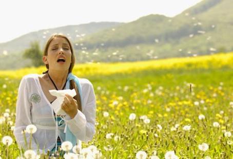 Oohhhhh llegó la primavera y con ella la molesta rinitis!!!