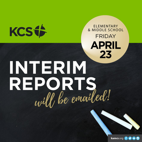 Interim Reports: Elementary and Middle School