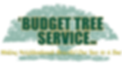 ABudgetTreeServiceLogo - no #.png