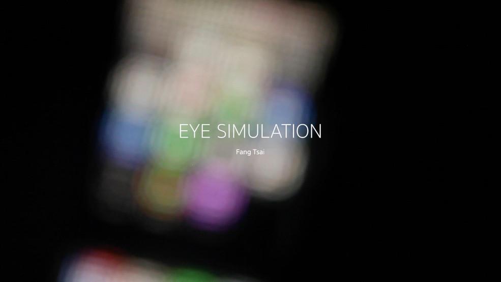 Eye Simulation