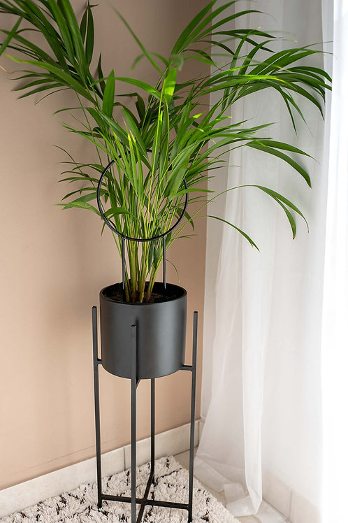 Harlow Plant Stand
