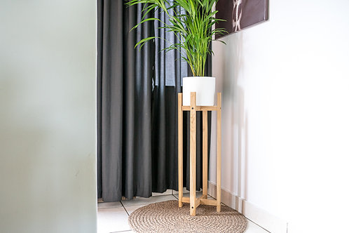 Jade Plant Stand