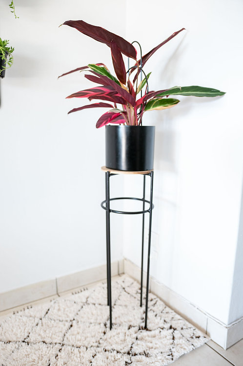 Emily Plant Stand