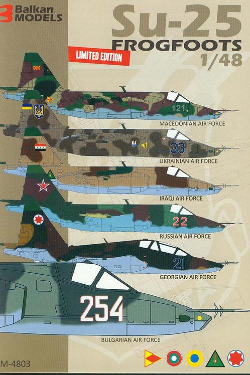 Su-25 FROGFOOTS