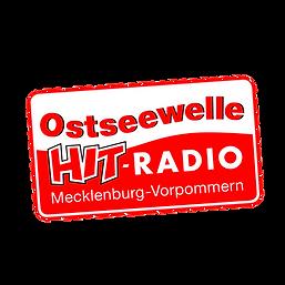 Logo OSW.PNG