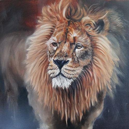 Lion - Original