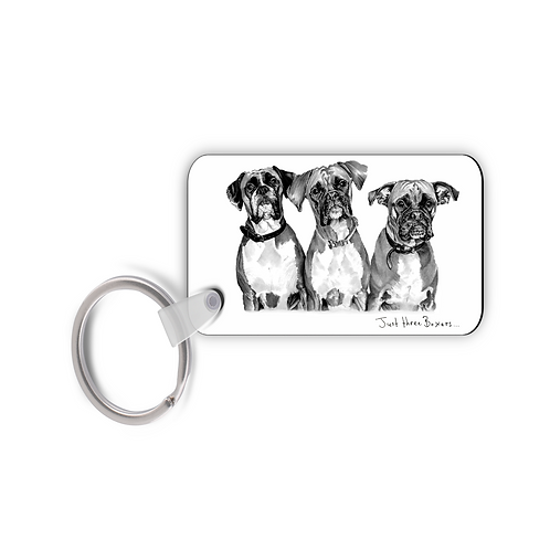 Just Three Boxers - Keyring