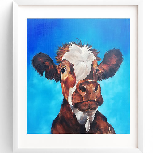 Curious - The Gormire Cow - Print