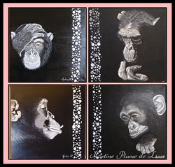 4 primates
