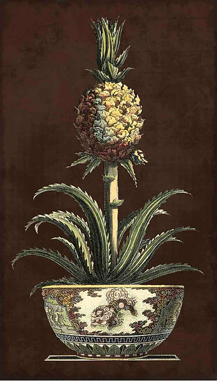 POTTED PINEAPPLE II - ANTIQUE FRUIT PRINT