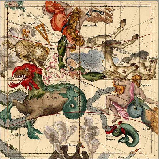 Constellation Chart 1693b Art Print
