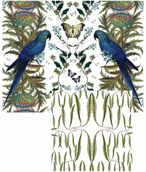 BLUE MACAW/FERN PLACEMAT SETS