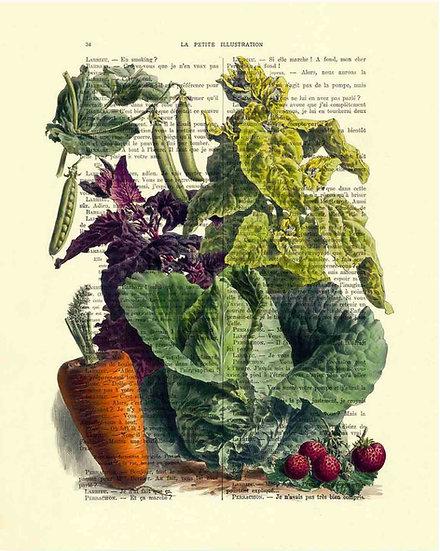 VINTAGE VEGGIES - ANTIQUE FRUIT PRINT