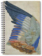 WING OF A BLUE ROLLER notebok