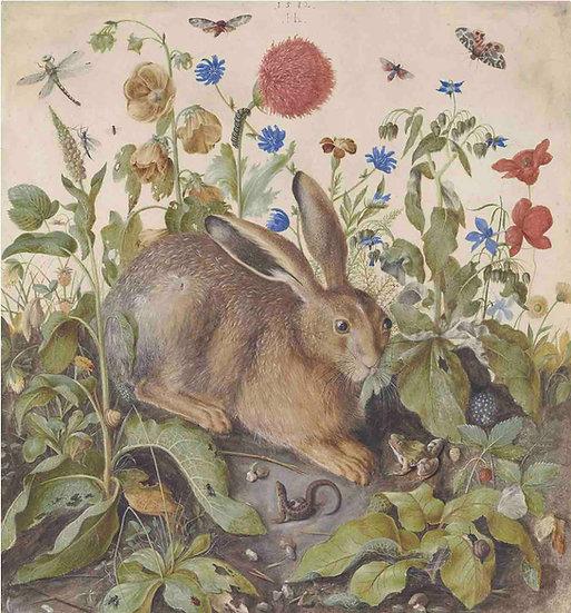 A Hare amongst Flowers - Hans Hoffmann