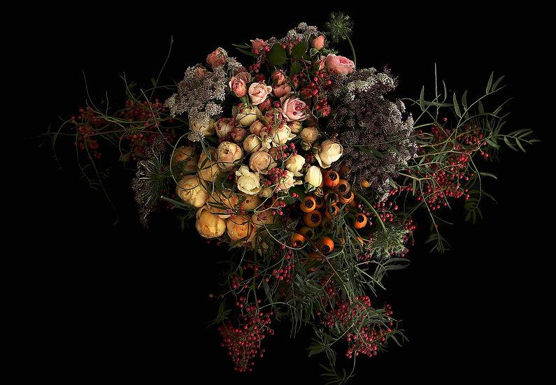 AURELIAN - LUCY ROSE