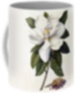 MAGNOLIA GRANDIFLORA mug