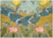 Birds in Flight boxed set of 10 greeting cards