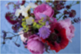 botanica poppy copy.jpg