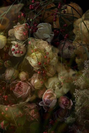 SECRET GARDEN - LUCY ROSE