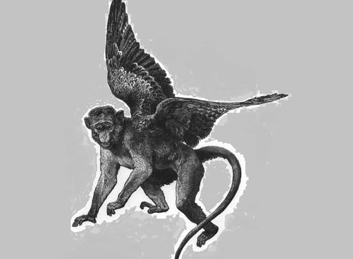 Flygande apor ( Flying Monkeys )