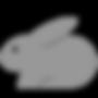 rabbit-1-90x90.png