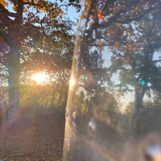 Arrianne reflecting the sunset.jpg