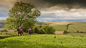 horse riding on the downs.jpg