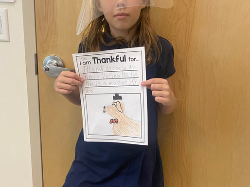 We're Thankful for The Hill School Because...