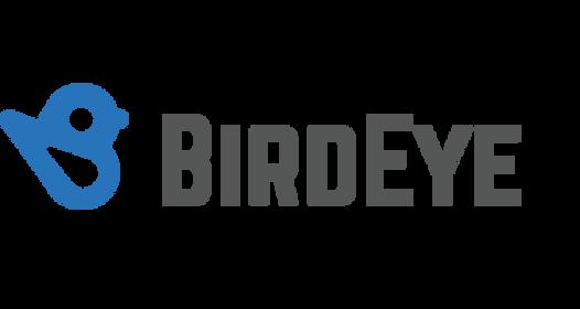 birdeye.png