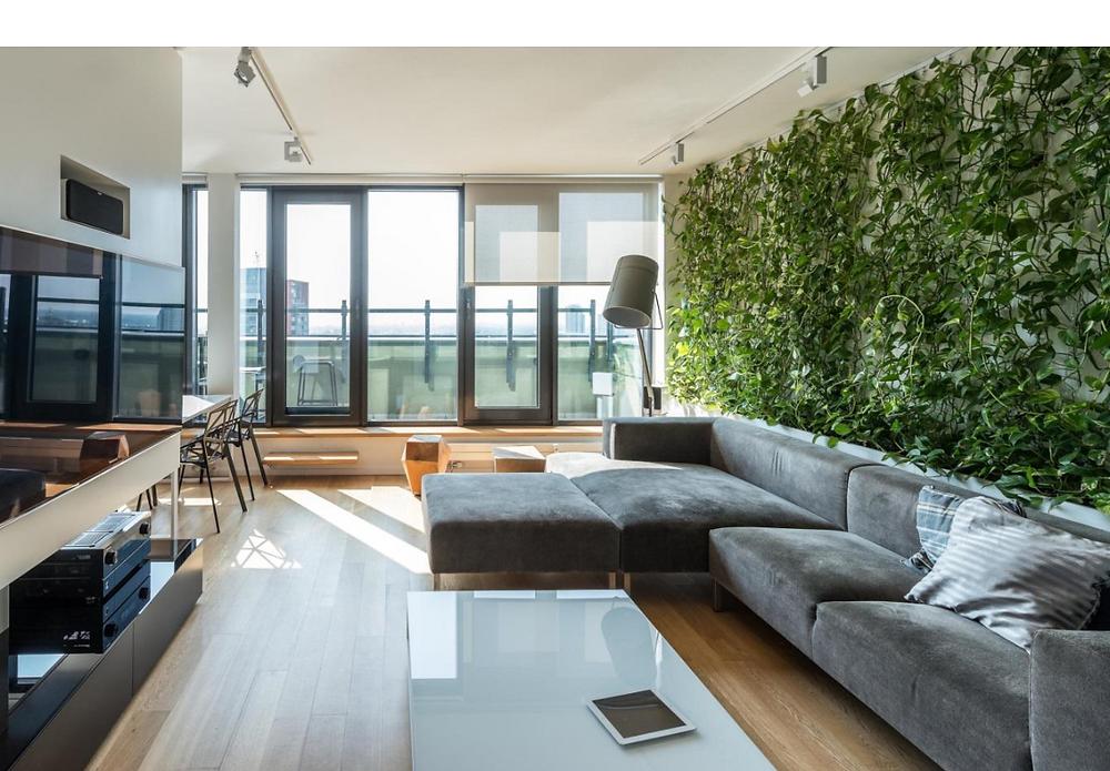 קיר ירוק בסלון הבית